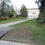villa con tulipani_05-04-11_0001